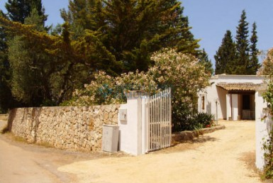villa in the countryside Salento
